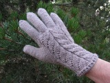 Tan_lace_gloves_thumb