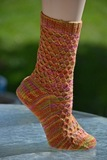 Harlequin_socks_1_thumb