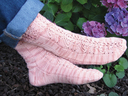 Bellingrath_sock_thumb